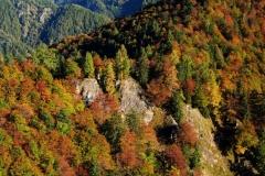 Herbst im Reichraminger Hintergebirge, Nationalpark Kalkalpen