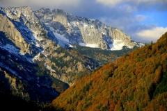Herbstlich gefärbter Buchenwald im Nationalpark Kalkalpen. In Hintergrund Sengsengebirge mit steilen Nordabstürzen